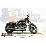 2020 Harley-Davidson Sportster Iron 883 for sale 200806434