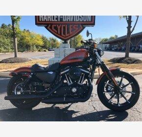 2020 Harley-Davidson Sportster Iron 883 for sale 200839010