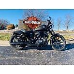2020 Harley-Davidson Sportster Iron 883 for sale 200851028