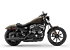 2020 Harley-Davidson Sportster Iron 883 for sale 200892897