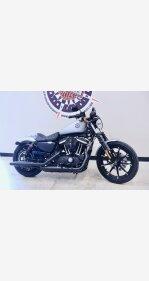 2020 Harley-Davidson Sportster Iron 883 for sale 200895322