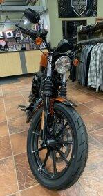2020 Harley-Davidson Sportster Iron 883 for sale 200904093