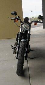 2020 Harley-Davidson Sportster for sale 200917323