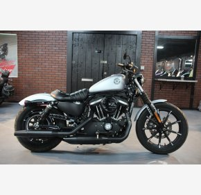 2020 Harley-Davidson Sportster Iron 883 for sale 200922428