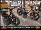 2020 Harley-Davidson Sportster for sale 200924274