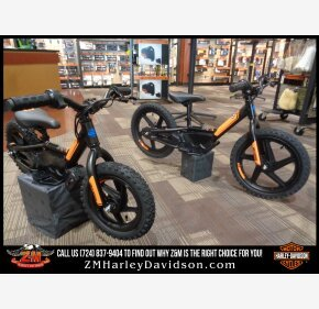 2020 Harley-Davidson Sportster for sale 200924274