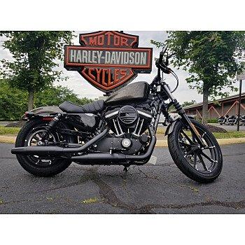 2020 Harley-Davidson Sportster Iron 883 for sale 200933915