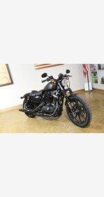 2020 Harley-Davidson Sportster Iron 883 for sale 200938261