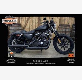 2020 Harley-Davidson Sportster Iron 883 for sale 200939190