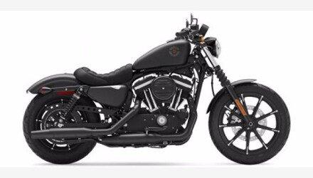 2020 Harley-Davidson Sportster Iron 883 for sale 200939853
