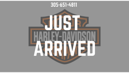 2020 Harley-Davidson Sportster Forty-Eight for sale 200940832