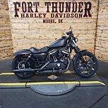 2020 Harley-Davidson Sportster Iron 883 for sale 200947067