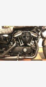 2020 Harley-Davidson Sportster Iron 883 for sale 200967318