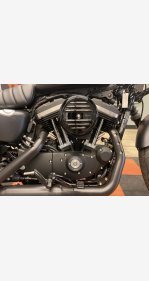 2020 Harley-Davidson Sportster Iron 883 for sale 200967518