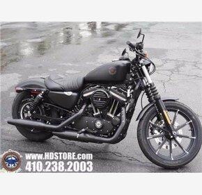 2020 Harley-Davidson Sportster for sale 200967586