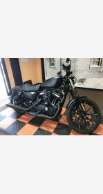 2020 Harley-Davidson Sportster Iron 883 for sale 200969853