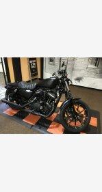 2020 Harley-Davidson Sportster Iron 883 for sale 200969860
