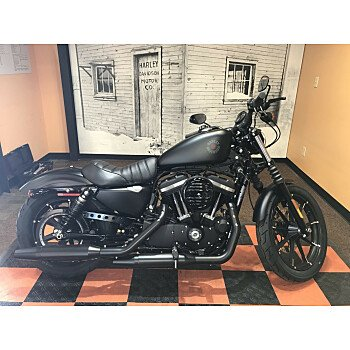 2020 Harley-Davidson Sportster Iron 883 for sale 200969871