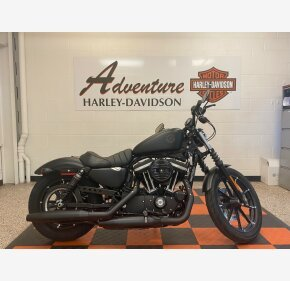 2020 Harley-Davidson Sportster Iron 883 for sale 200969921