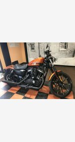 2020 Harley-Davidson Sportster Iron 883 for sale 200973337