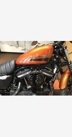 2020 Harley-Davidson Sportster Iron 883 for sale 200973364