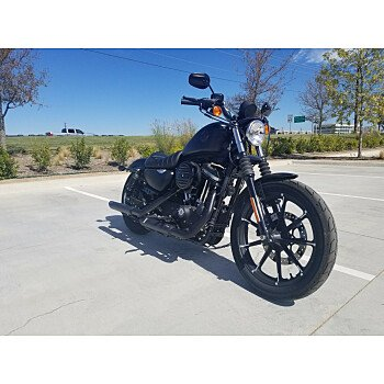 2020 Harley-Davidson Sportster Iron 883 for sale 200976370
