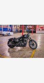 2020 Harley-Davidson Sportster Iron 883 for sale 200983504