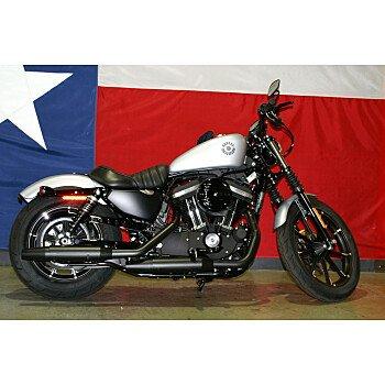 2020 Harley-Davidson Sportster Iron 883 for sale 200983687