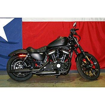 2020 Harley-Davidson Sportster Iron 883 for sale 200983693