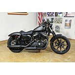 2020 Harley-Davidson Sportster Iron 883 for sale 201005428