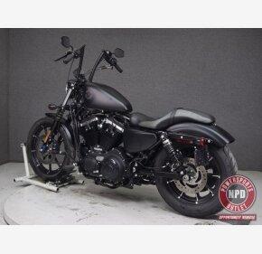 2020 Harley-Davidson Sportster Iron 883 for sale 201014818
