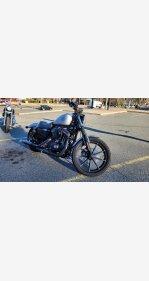 2020 Harley-Davidson Sportster for sale 201035600