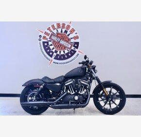2020 Harley-Davidson Sportster Iron 883 for sale 201046019