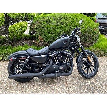 2020 Harley-Davidson Sportster Iron 883 for sale 201056125