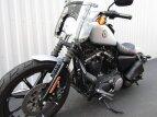 2020 Harley-Davidson Sportster for sale 201063113