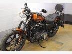 2020 Harley-Davidson Sportster Iron 883 for sale 201064237
