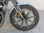 2020 Harley-Davidson Sportster Iron 883 for sale 201064313