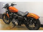 2020 Harley-Davidson Sportster Iron 883 for sale 201064448