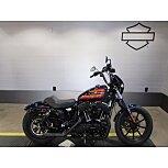 2020 Harley-Davidson Sportster for sale 201066488
