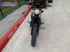 2020 Harley-Davidson Sportster Iron 883 for sale 201066675