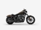 2020 Harley-Davidson Sportster Iron 883 for sale 201067122