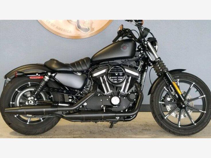 2020 Harley-Davidson Sportster Iron 883 for sale 201067689