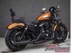 2020 Harley-Davidson Sportster Iron 883 for sale 201071058