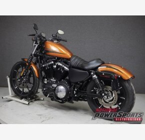 2020 Harley-Davidson Sportster Iron 883 for sale 201071685