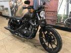 2020 Harley-Davidson Sportster Iron 883 for sale 201071707