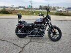 2020 Harley-Davidson Sportster for sale 201074103