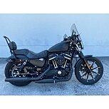 2020 Harley-Davidson Sportster Iron 883 for sale 201075208