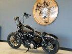 2020 Harley-Davidson Sportster Iron 883 for sale 201081512