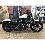 2020 Harley-Davidson Sportster Iron 883 for sale 201090686