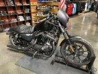 2020 Harley-Davidson Sportster Iron 883 for sale 201116977